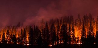 Stay Cool When Wildfires Threaten