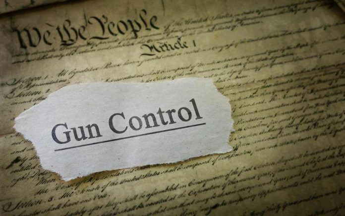 ALERT! Dire Warning for Gun Rights Advocates