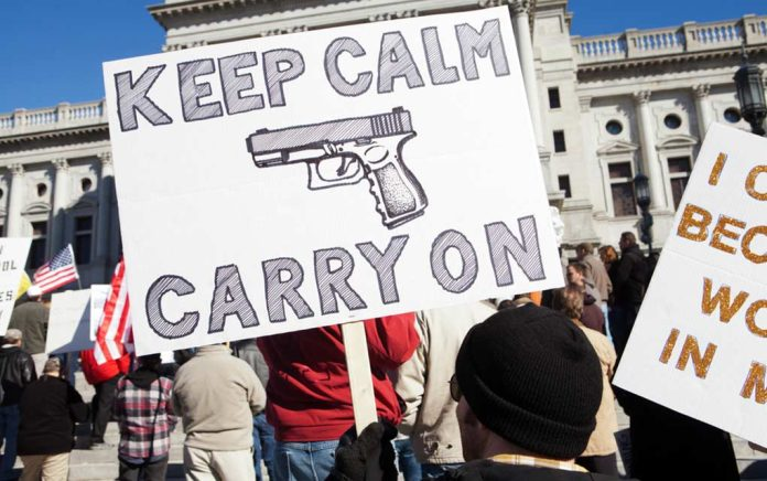 Smaller Than Usual Annual Gun Right Rally