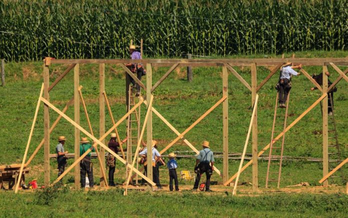 Self Sufficiency: Learning From the Amish