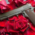 Data's In — Americans Love Their Guns
