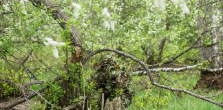 Camouflage Tactics Every Prepper Should Know