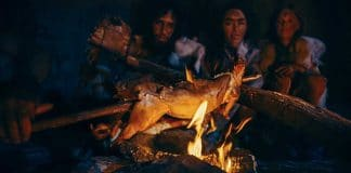 Stone Age Survival Cooking