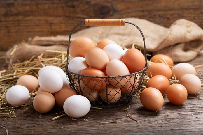 Don't Keep All Your Eggs in One Basket