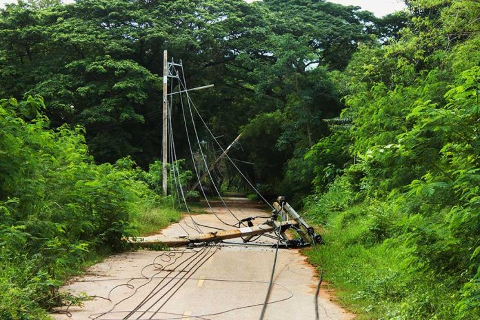 What to Do When Facing a Downed Power Line