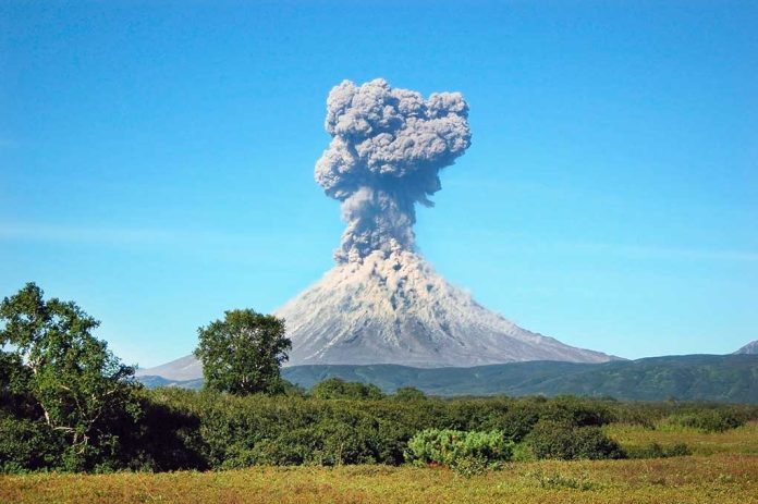 How to Survive When Nature Erupts
